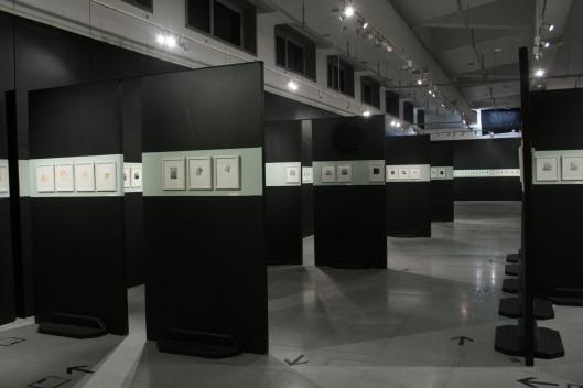 Bibliothèque Alexandrie, Égypte artiste sélectionnée 2009